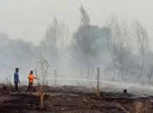 1842_Januari-September-2016-Polda-Riau-Tetapkan-93-Tersangka-Kasus-Karhutla-Dumai-Dominan-627x353